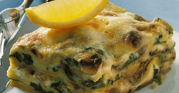 Eine wirklich gelungene Lasagne! Pilze und Spinat ergänzen sich ideal, der würzige Gorgonzola steuert das gewisse Etwas bei.