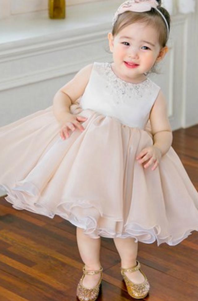 03d9904881 Flower Girl Dress, Pink Flower Girl Dress, Pale Pink Flower Girl ...