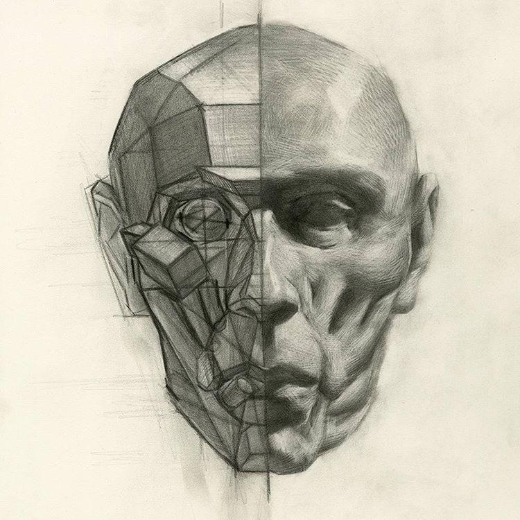 рисунок головы человека картинки ограждение выполнены