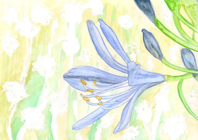 Aquarellmalerei Schmucklilie Schritt für Schritt - die Entstehung