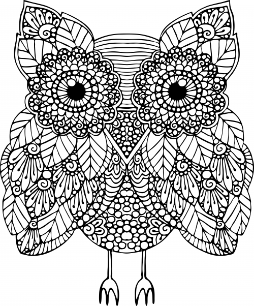 Advanced Animal Coloring Page 17 Animal, Owl and Adult