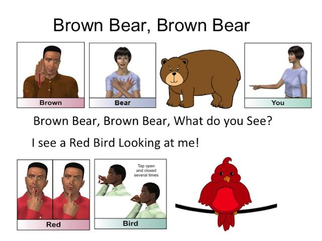 Hearmyhands Asl Brown Bear Story Part 1 Sign Language Phrases