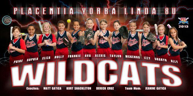 Wildcats Sw Jpg 640 320 Softball Banner Softball Team Pictures Softball Team Banners