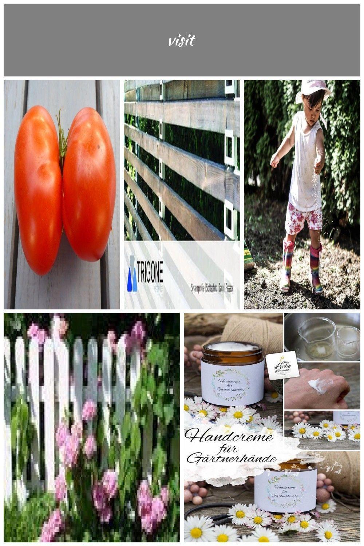 Tomaten Pflanzen Im Garten Und Auf Dem Balkon Naturlich Dungen Und Vor Krankheiten Schutzen Tomaten Pflanzen Aber Richtig Standort Naturliche Pflege Dungu Tomato Plants Tomato Plants