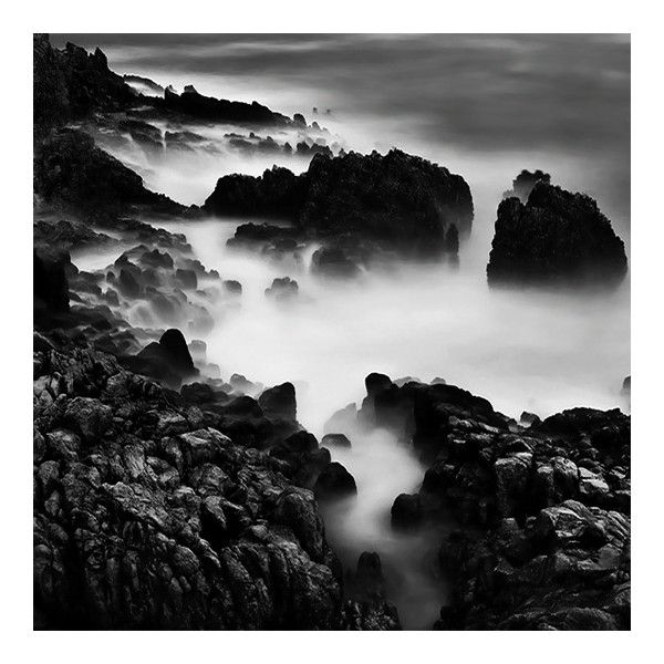 Beautiful black and white nature photography ❤ liked on polyvore featuring backgrounds photo and pics