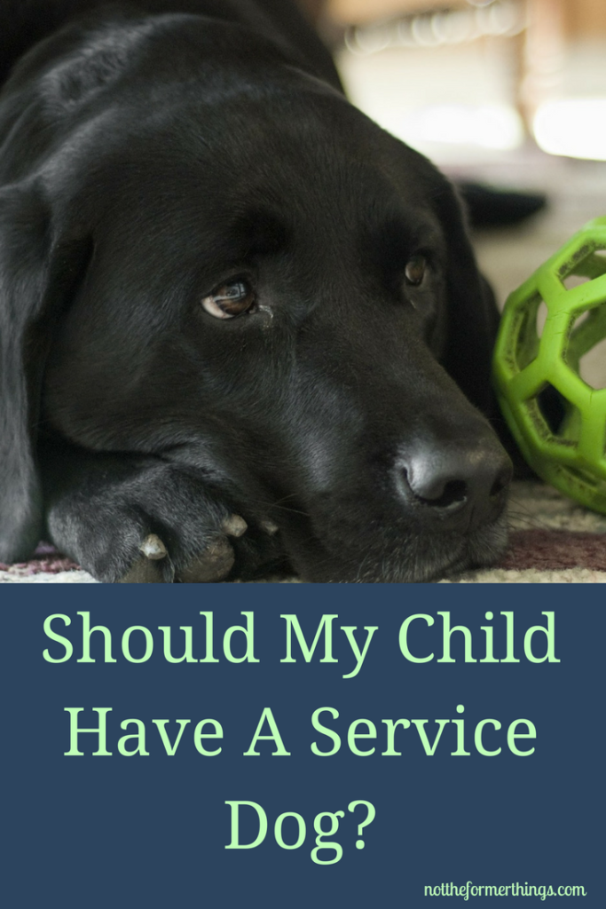 Should My Child Have A Service Dog Autism service dogs