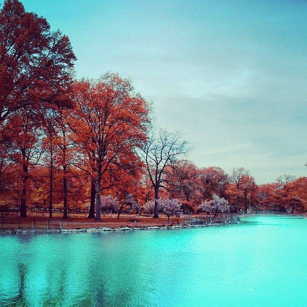Paisaje De Contrastes #paisajes #fotografia #foto