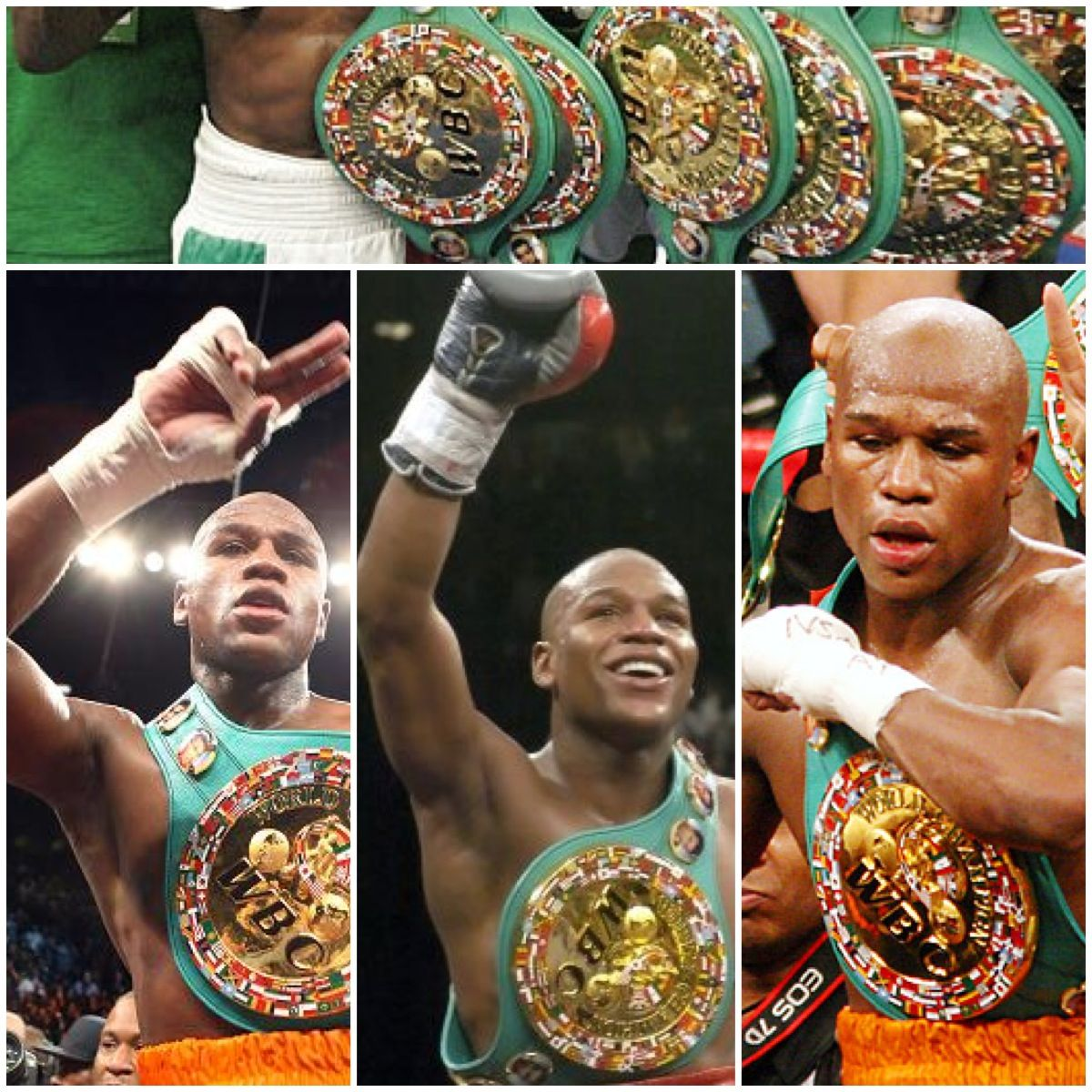 Mixed Martial Arts Games: Floyd Mayweather