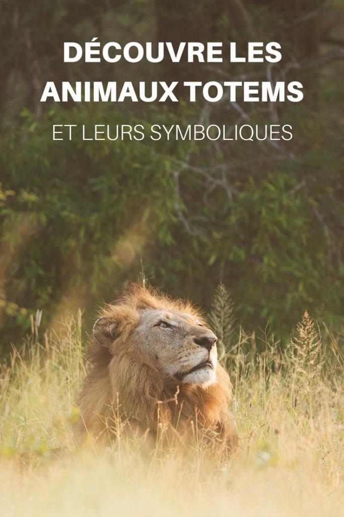 Quel Est Mon Animal Totem : animal, totem, Découvre, Animaux, Totems, Leurs, Symboliques, Aurore, Lumière, Totems,, Symbole, Animaux,