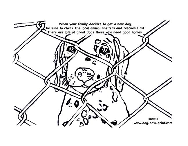 Animal Shelter Coloring Page Animal Shelter Dog Coloring Page Dog Paw Print