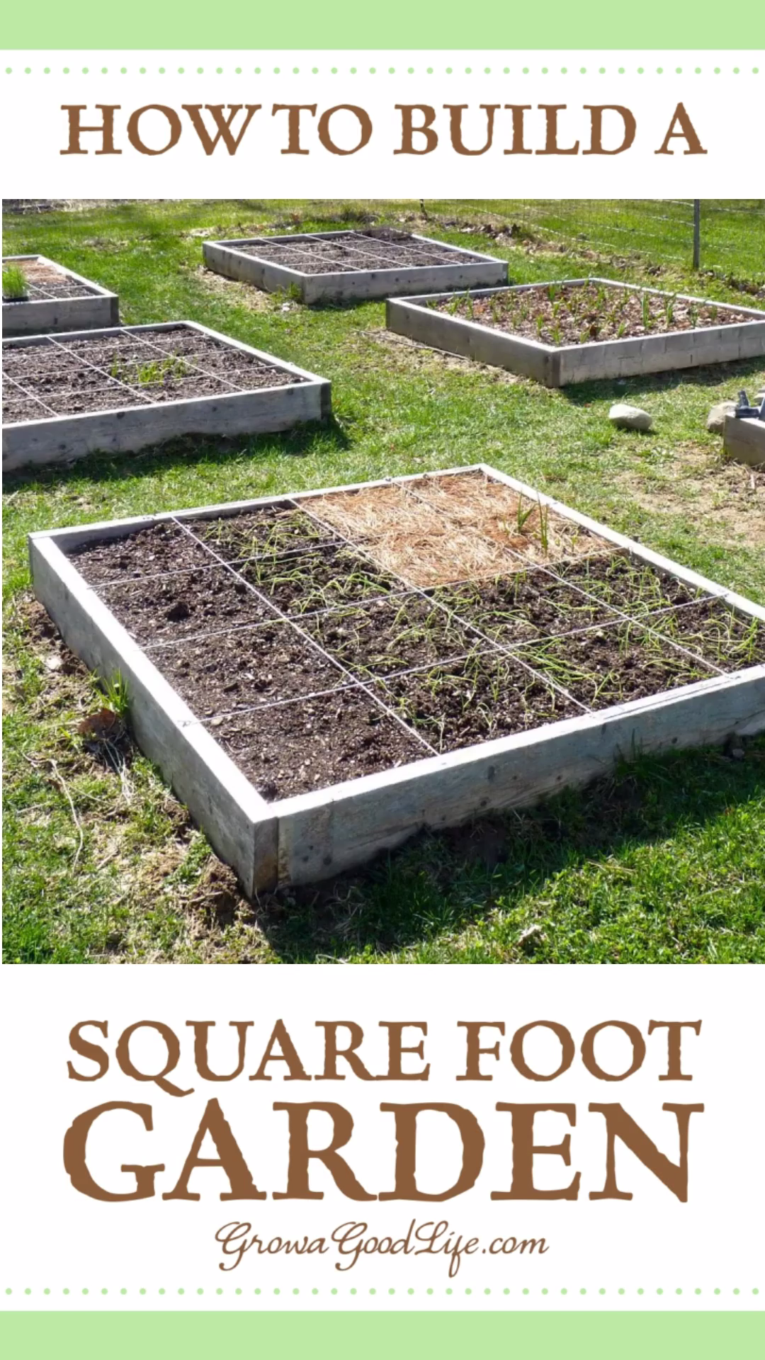 Photo of How to Build a Square Foot Garden