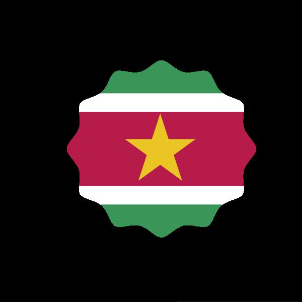Ghana Flag Heraldic Lion Ghana Flag Lion Silhouette Flag