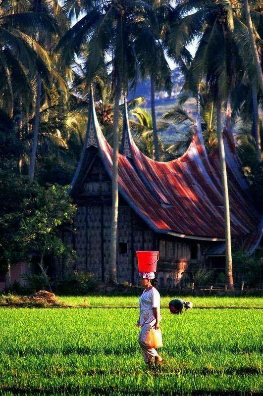 Alam Minang Kabau Paradise Island Pemandangan Indonesia