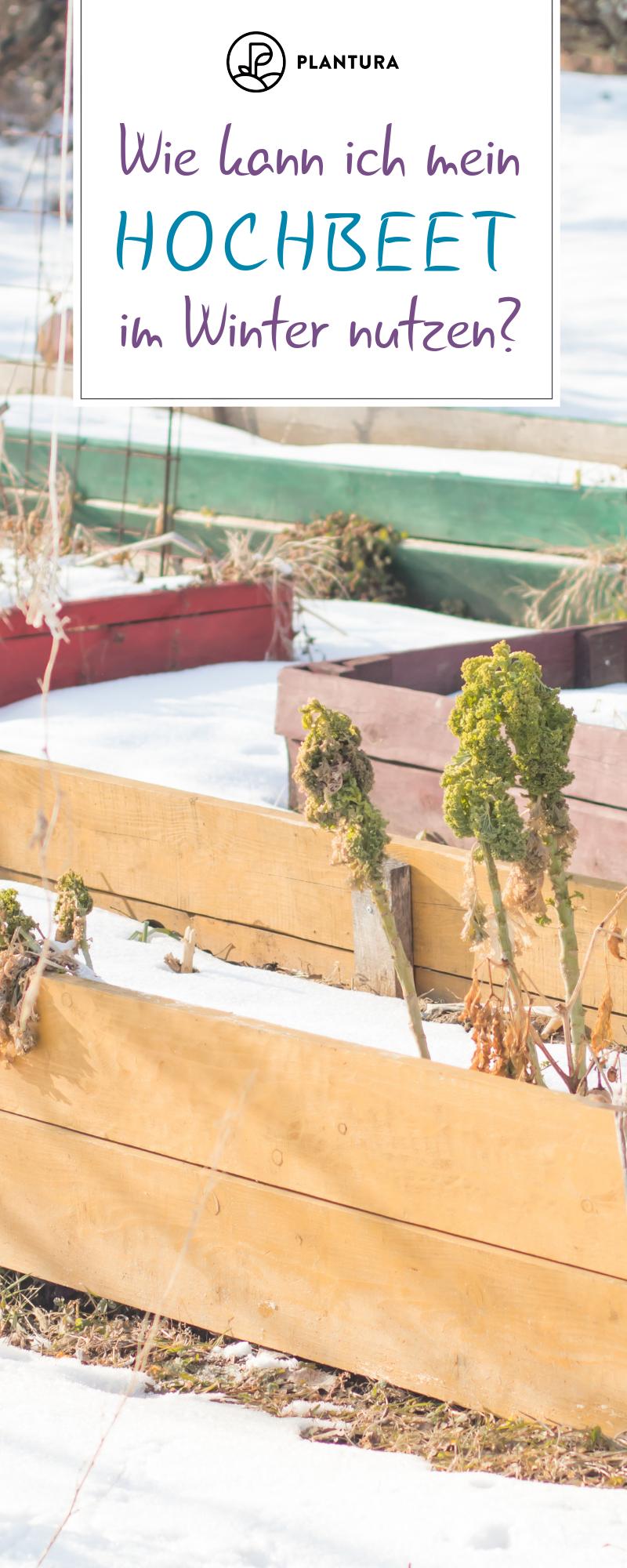 Hochbeet Im Winter Nutzen Ideen Tipps Hochbeet Garten Hochbeet Palettengarten