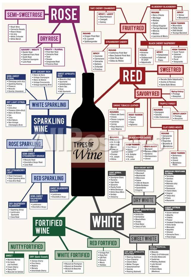 wine posters ideas wine folly wine