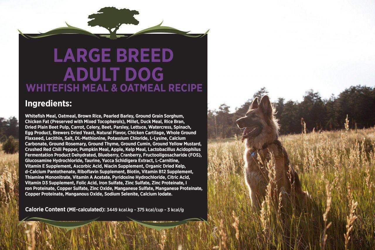 Blackwood Pet Food 22403 Adult Dog Large Breed Whitefish Meal