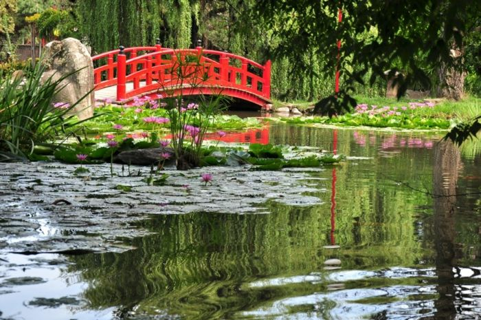 japanischer garten gartenteich rote brücke holz wasserlilien, Hause und garten