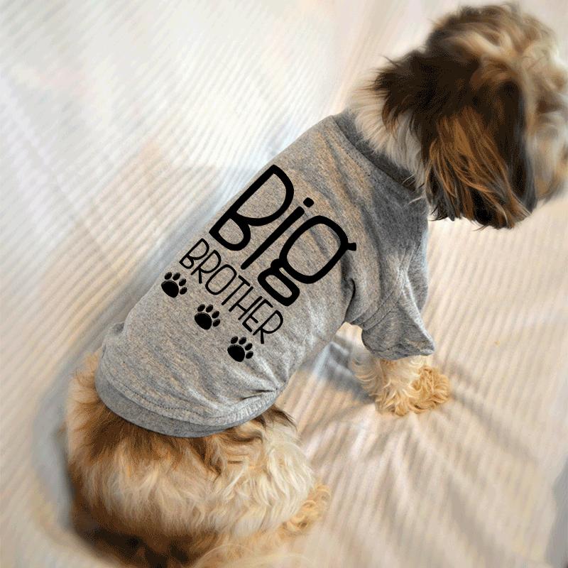 2f142bda2 Big Brother Dog T-Shirt #doglovers #dogsarefamily #pregnancyreveal Dog  Quotes Funny,