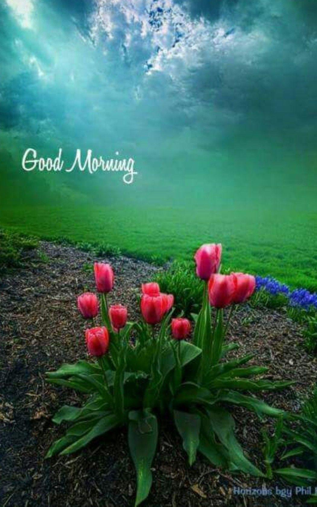 Good Morning Beautiful Landscapes Beautiful Nature Landscape Photography
