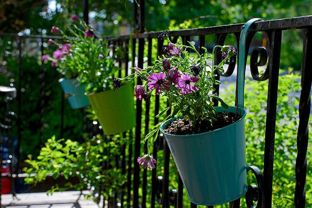 Dollar Store Containers On My Porch Hanging Potted 400 x 300