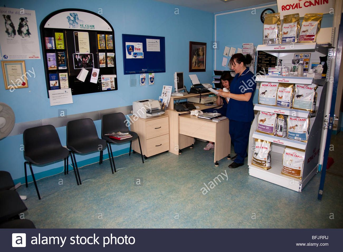 veterinary behind reception Google Search Home decor