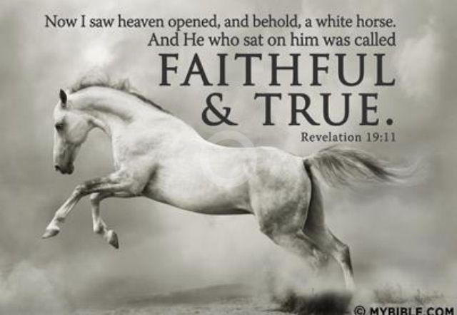 Pin by Lewis Satini Publishing Studio on Revelation | Horses ...