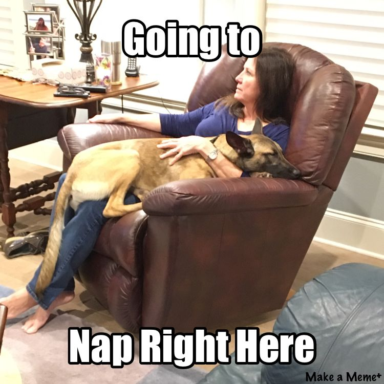 Check Out This Meme I Made With Makeameme Memes Recliner Chair Chair