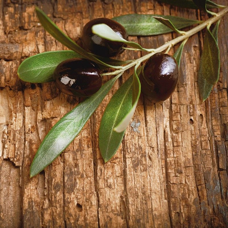 Anna Subbotina Oliven vor einem Holzhintergrund - Alu - glasbilder küche spritzschutz