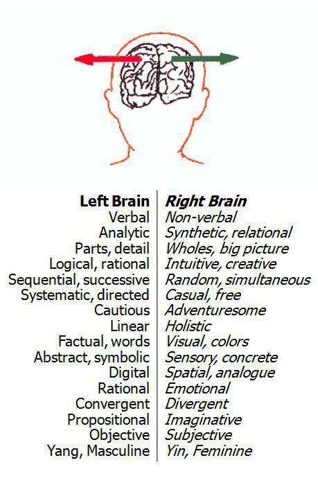 left brain right brain. Thank God I'm right brain dominant