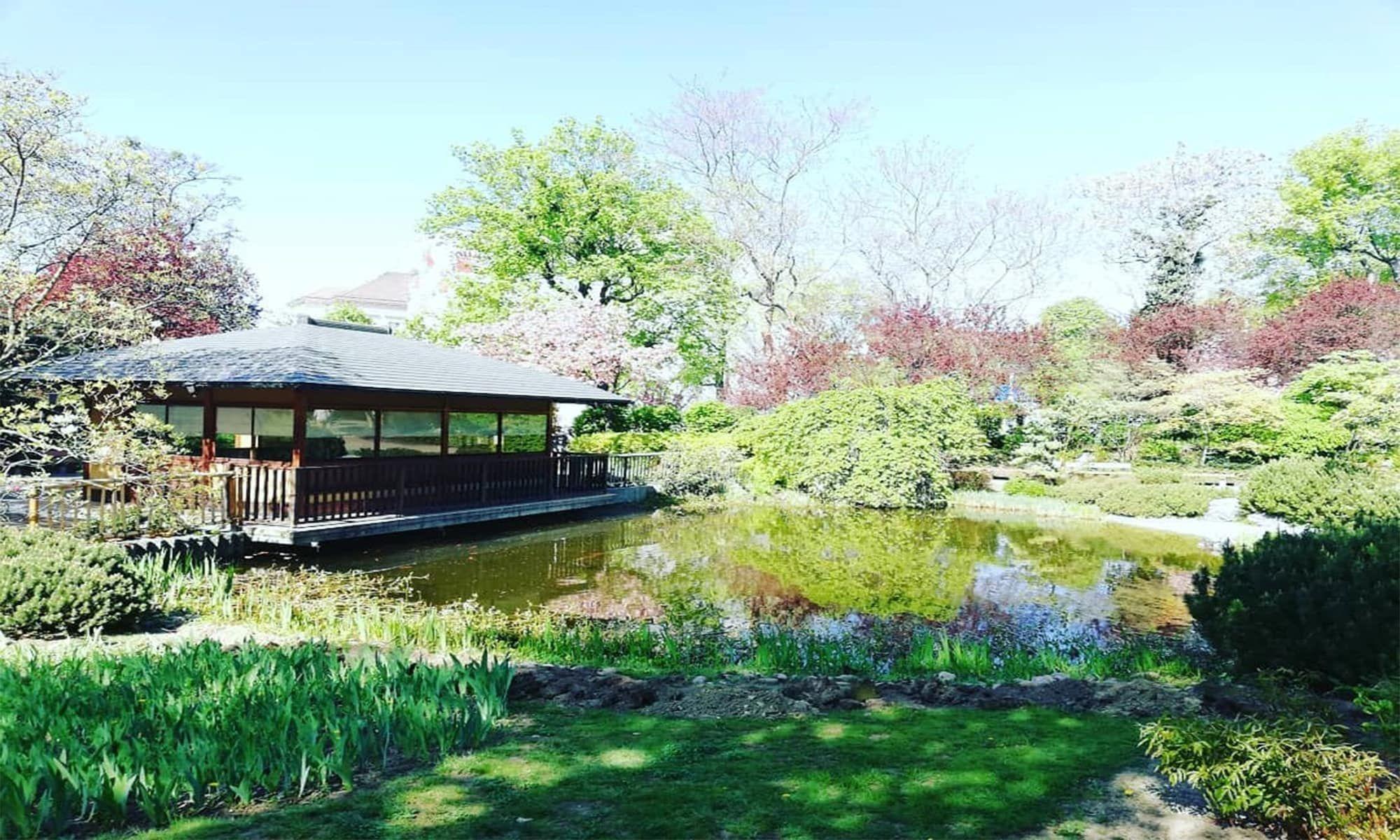 Japansiche Gartenkultur Fur Alle Naherholungssuchenden In Wien 1000things At Parks Ausflug Erholung