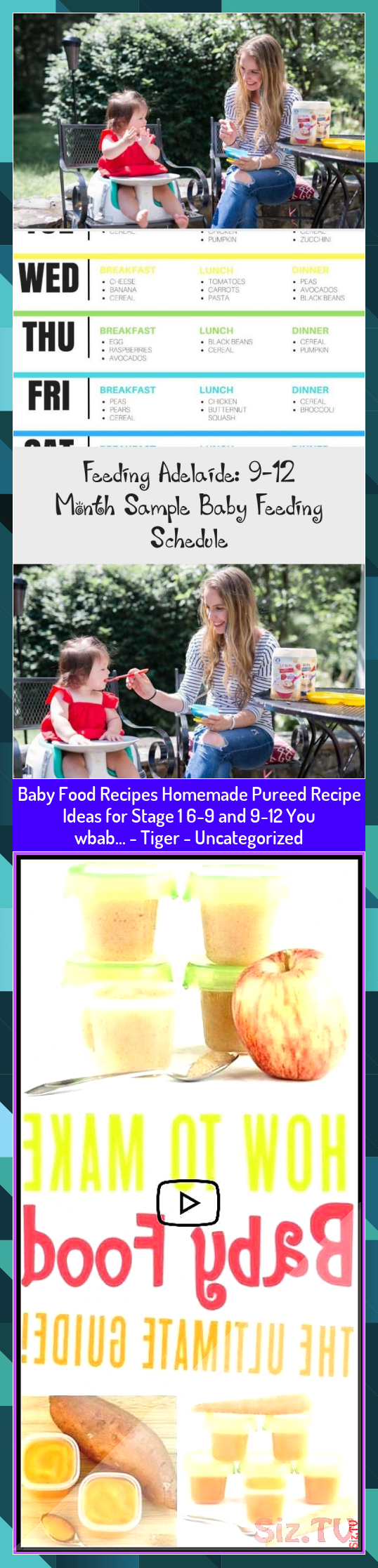 Baby Food Recipes Homemade Pureed Recipe Ideas for Stage 1 69 and 912 You wbab  Tiger  Uncategorized