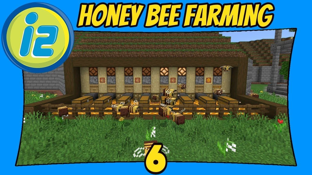 The forestry bees processing area, it's purpose is turn bee's. Honey Bee Farming 6 Infiniverse 2 0 Minecraft Bedrock Edition Mcpe Minecraft Blueprints Honey Bee Farming Minecraft