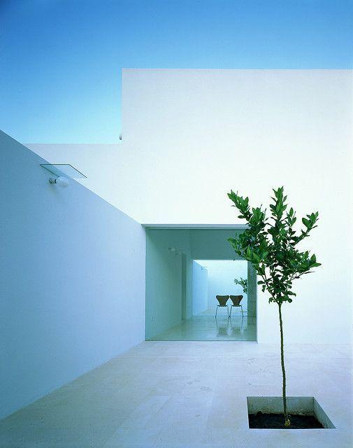 #Courtyard #Gardens #Voids #White