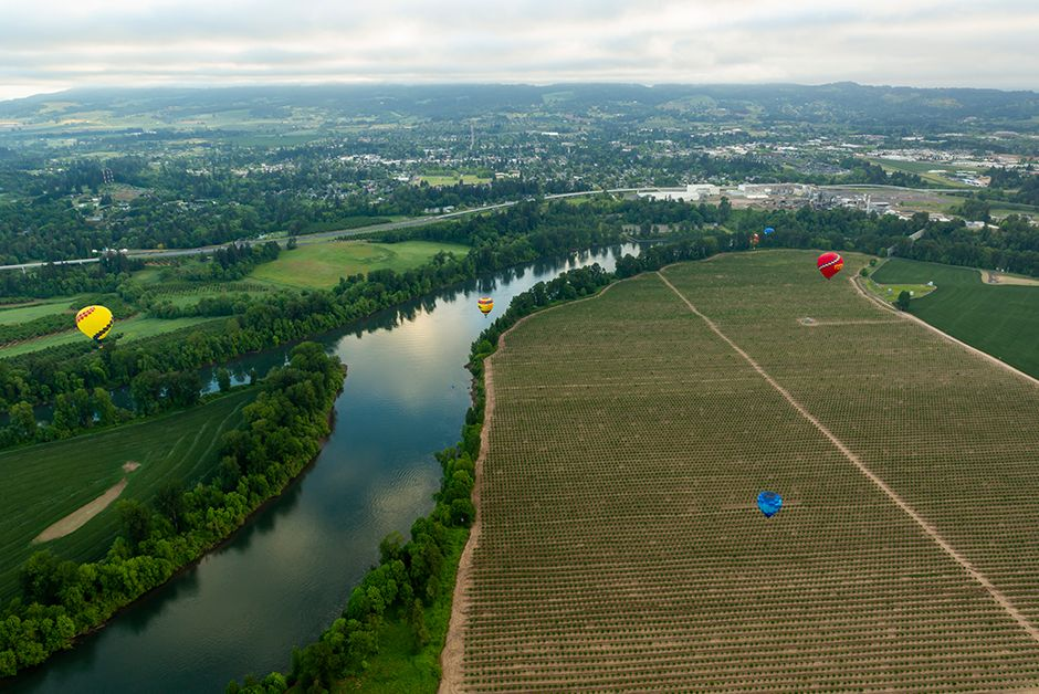Soaring above Oregon Wine Country A Hot Air Balloon Ride