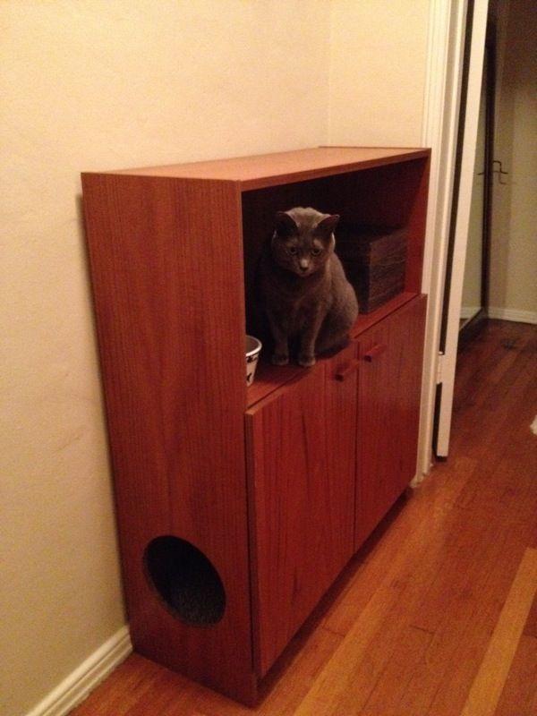 cat litter cabinet DIY   Cat   Pinterest   Litter box, Cat and Box