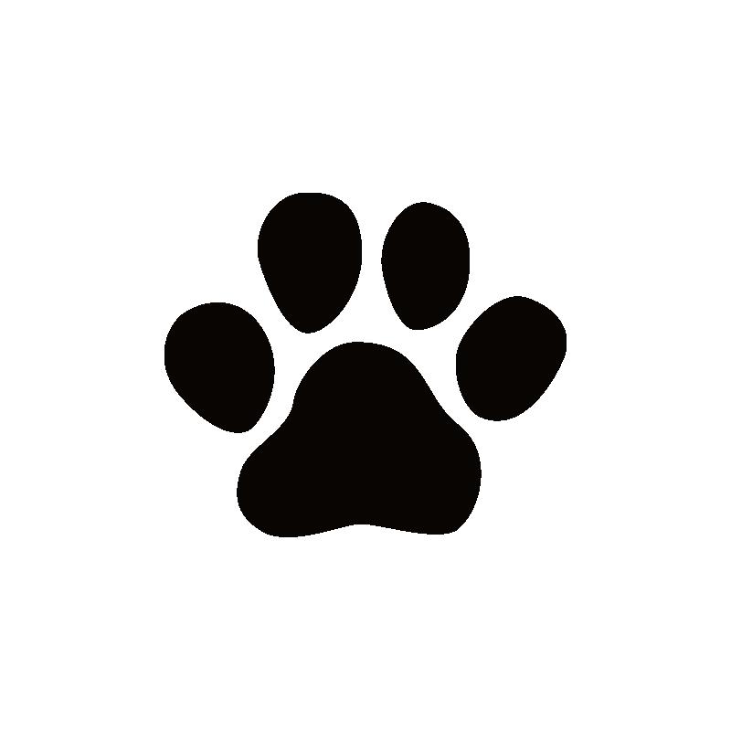 dachshunds imagui - Buscar con Google