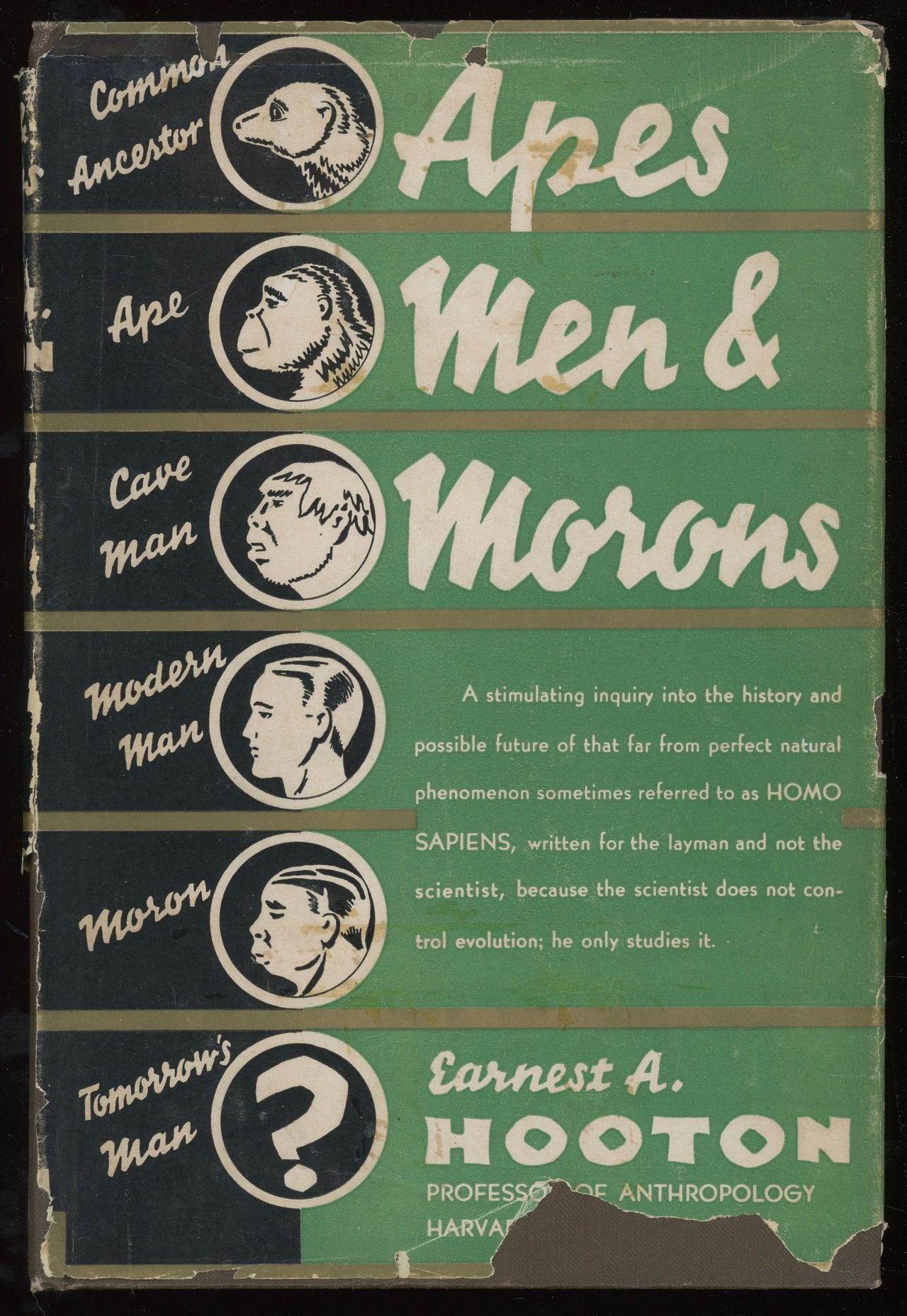 Apes, Men, And Morons