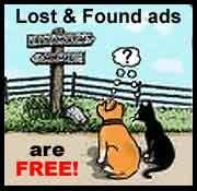 Post Your Lost And Found Pets On Facebook Free Even If You Don T