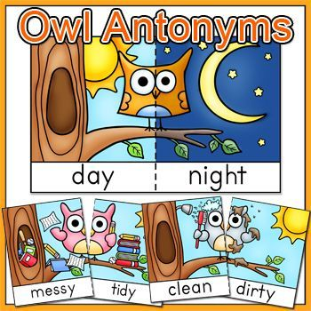 Antonyms game tiles posters and flash cards owl theme owl owl antonyms flashcards game tiles and posters in color and black white owl teach you about antonyms these 16 whimsical owl antonyms illustrations m4hsunfo