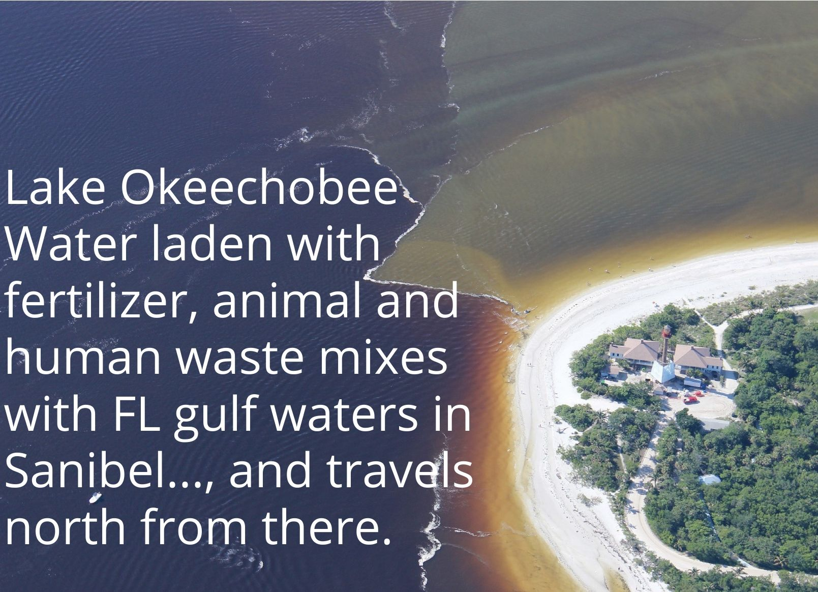 Lake Okeechobee Polluted Waters Are Released Into Rivers