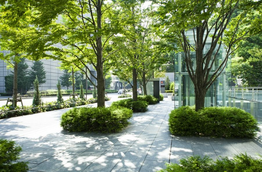 Street Trees Can Truly Enhance A Cityscape Keep Them Safe Using Tree Protection Without Taking Awa Landscape Elements Landscape Trees Modern Landscape Design