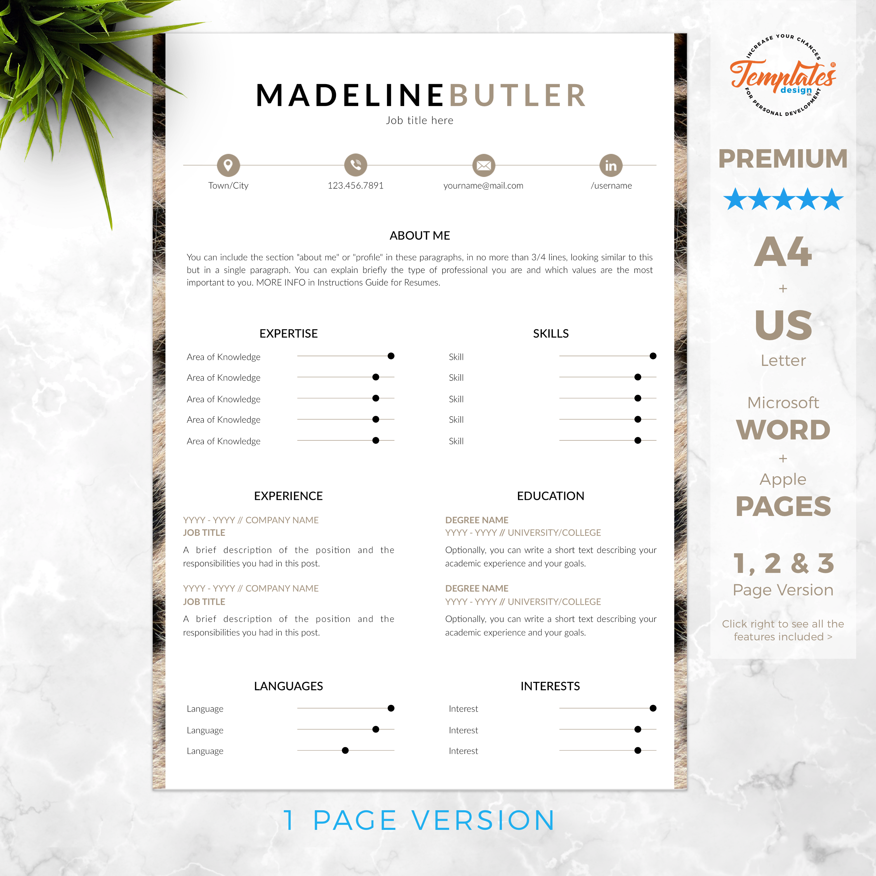 Animal Print Resume / CV Template for Word & Pages / CV