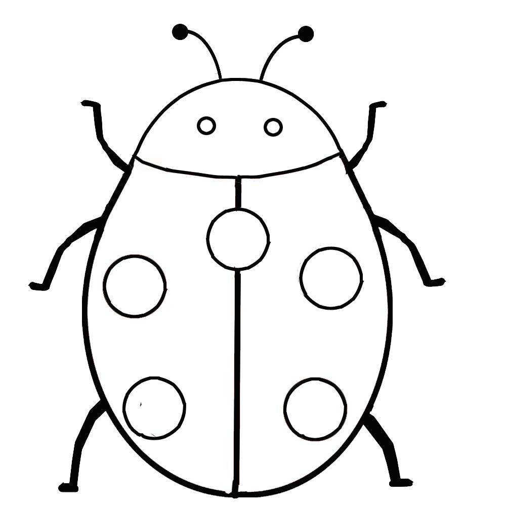 Ladybug Insect Coloring Pages Bug Coloring Pages Ladybug Coloring Page