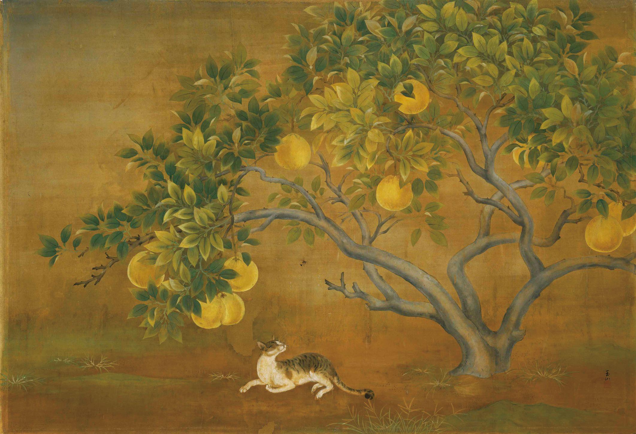 Pomelo tree | by Lin Yu-shan