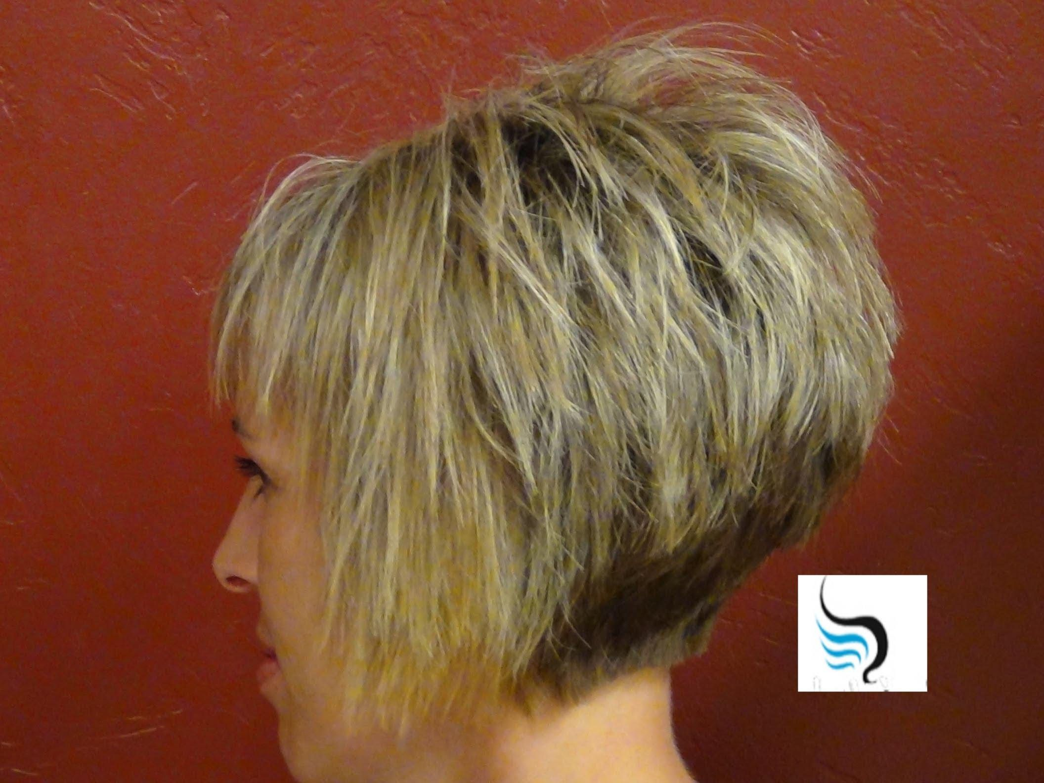 Stacked Bob Haircut Back View Short Hairstyles Short Haircuts