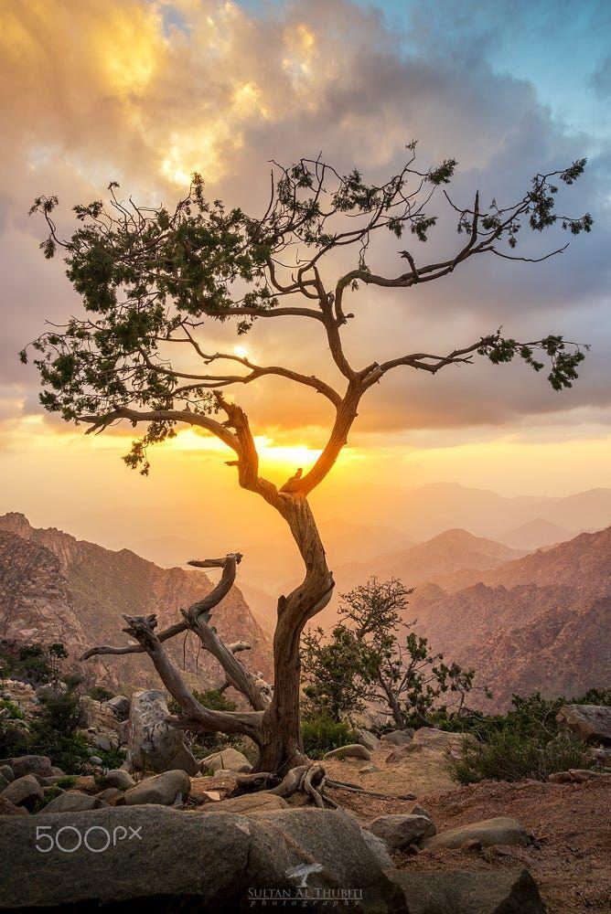 مدينة الطائف الشفا By Sultan Althubiti On 500px Taif Saudi Arabia Taif Landscape Sunrise Sunset