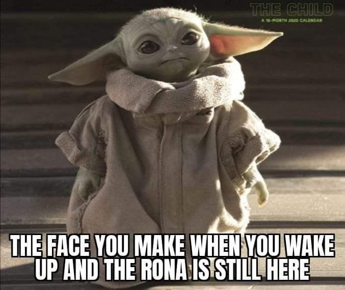 Pin By Hylarie Lerette On Baby Yoda In 2020 Yoda Meme Yoda Funny Memes