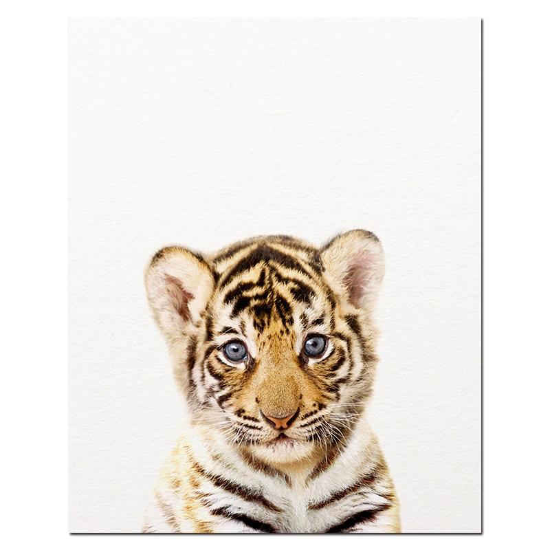 Affiche Bebes Animaux De La Savane Art Animalier Animaux De La Savane Bebes Animaux