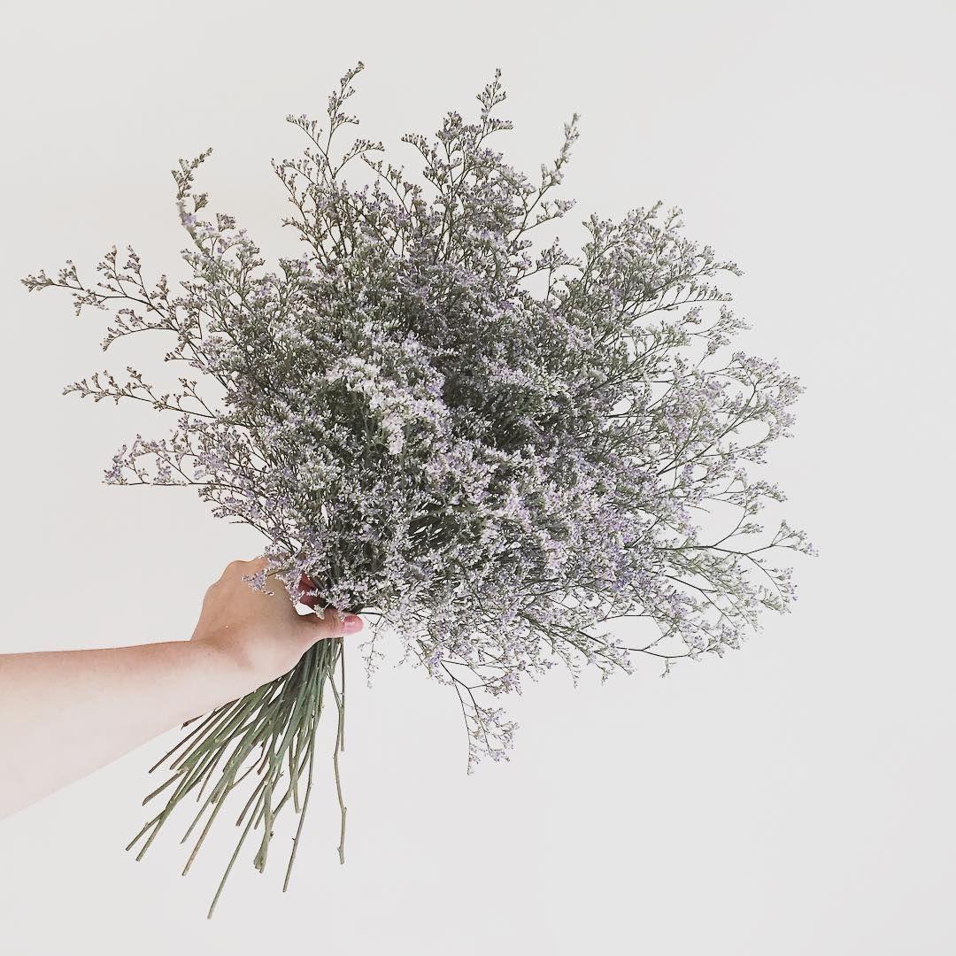 내일 촬영에 쓸 💜 예쁜 리본 묶어 가야지 :] (덥지마라 덥지마라) . . . #flower #flowergram #florist #instaflower  #freelancer #handtied #flowerlesson…