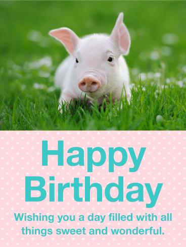 Precious Pig Happy Birthday Card Birthday Greeting Cards By Davia Happy Birthday Pig Piglet Happy Birthday Funny Happy Birthday Images